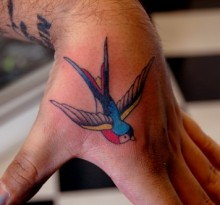 Различия татуировок воробьев и ласточек
