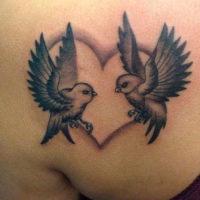 Две птицы в сердце, тату на лопатке