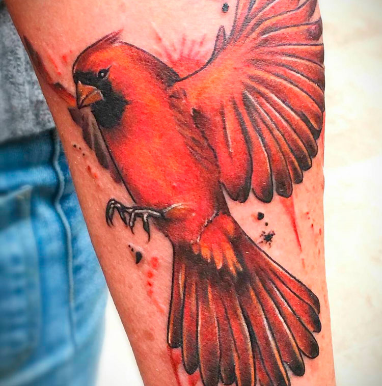 Птица кардинал, тату на предплечье
