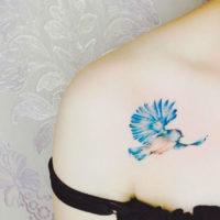 Синяя птица на ключице