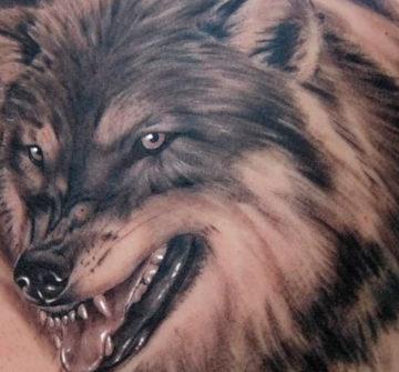 Значение татуировки волк