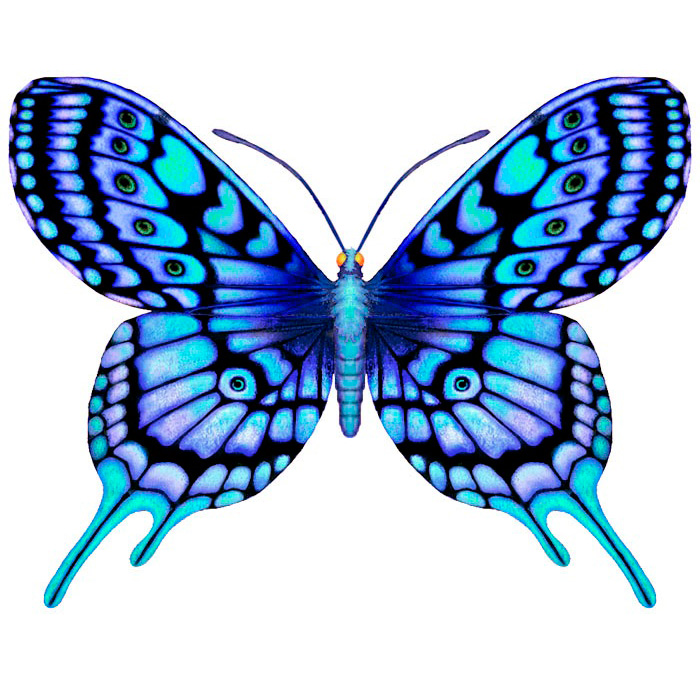 Эскиз татуировки бабочки (25)