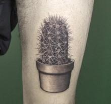 Тату кактуса на ноге