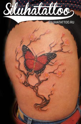 Бабочка и цветущее дерево на бедре