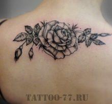 Черная татуировка розы на спине у девушки