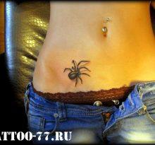 Черный паук внизу живота у девушки
