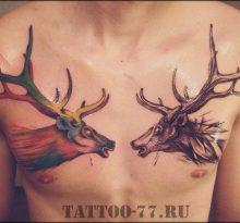 Два оленя на груди у мужчины