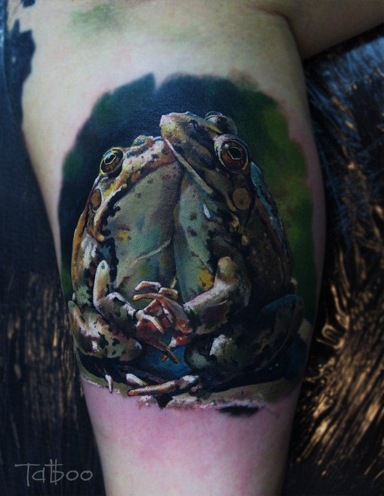 Две реалистичные лягушки