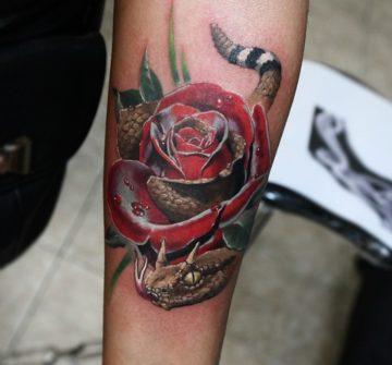 Роза со змеей на предплечье