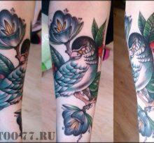 Синяя птица и синие цветы