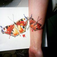 Бабочка на предплечье в стиле акварель