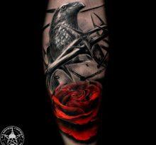 Птица и цветок розы