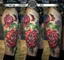 Цветные хризантемы и бабочка на ноге