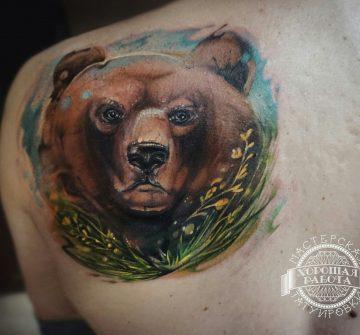 Цветная морда медведя на лопатке