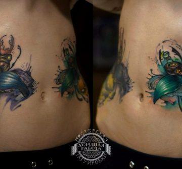 Два больших жука на животе в стиле акварель