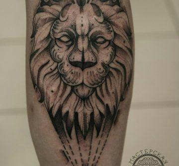 Лев в стиле графика