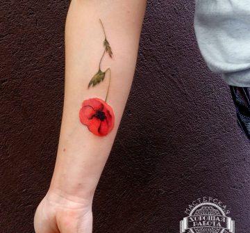 Маковый цветок на предплечье