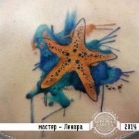 Морская звезда в стиле акварель