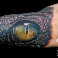 Глаз крокодила на бицепсе