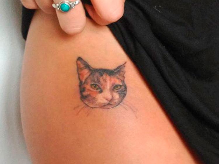 Маленький реалистичный портрет кошки на бедре