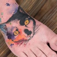 Портрет кошки в стиле акварель на ступне