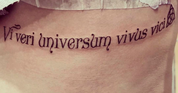Vi veri universum vivus vici