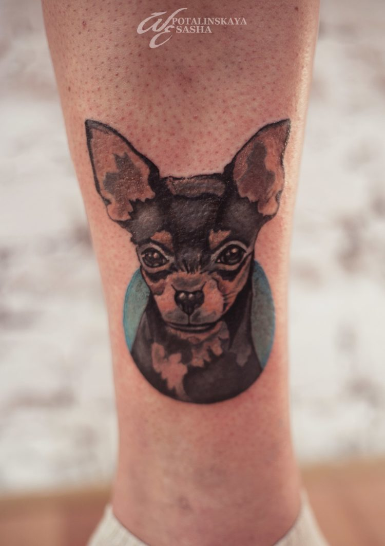 Портрет собачки