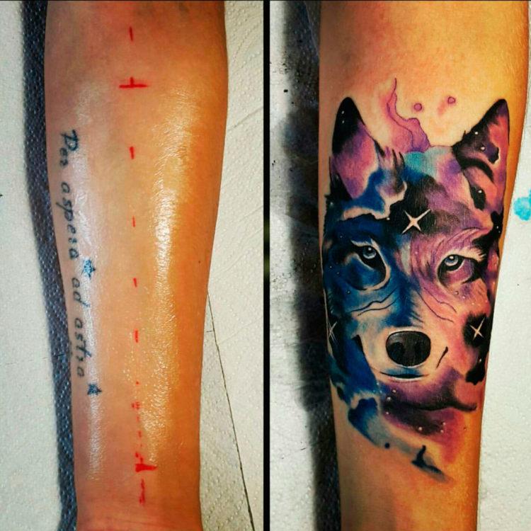 Космический волк, перекрытие