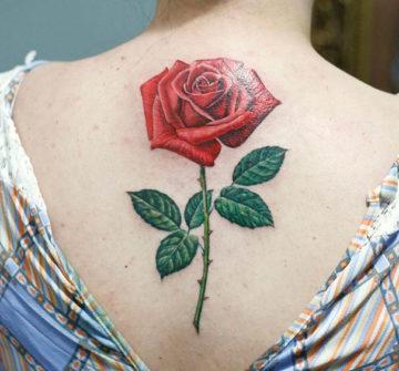 Тату красная роза с шипами