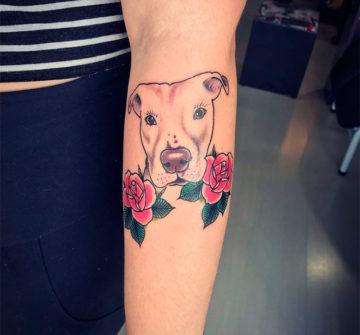 Татуировка питбуля и розы