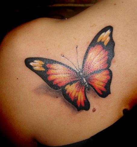 Butterfly-041jpg